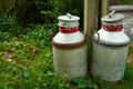 Milk cans jugs in a farm organic traditional dairy Royalty Free Stock Image