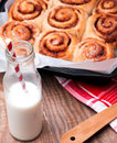 Milk and cinnamon buns Royalty Free Stock Photo
