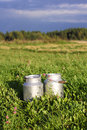 Milk containers grass and forest and blue sky Stock Image