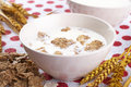 Milk and cornflakes Royalty Free Stock Image