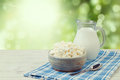 Milk and cottage cheese over green bokeh background. Jewish holiday Shavuot concept Royalty Free Stock Photo