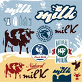 Milk labels set cow vector illustration Stock Photos