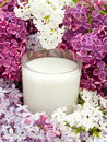 Milk and lilac Royalty Free Stock Photo