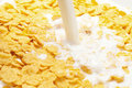 Milk splashing into cornflakes Royalty Free Stock Images