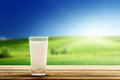 Milk and sunny day glass of Stock Photography