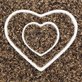 Milk Thistle Seed Royalty Free Stock Photo