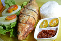 Milkfish fry in the present white rice and fresh vegetables Stock Photography