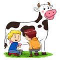 Milking a cow children in ranch farm Royalty Free Stock Photos