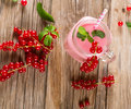Milkshake of redcurrant, shot from above Royalty Free Stock Photo