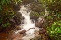 Milky waterfall on a small stream in Matheran hill station nestled in Sahyadri range of western ghat in Maharashtra Royalty Free Stock Photo
