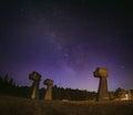 Milky way over a memorial park