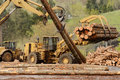 Mill ops large wheeled front end log loader working the log yard at a lumber processing that specializes in small logs Royalty Free Stock Photography