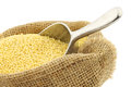 Millet in a burlap bag Royalty Free Stock Photo