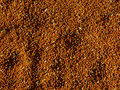 Millet grains texture Royalty Free Stock Photography