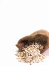 Millet , Put it in the bag , Put on a white background. Royalty Free Stock Photo