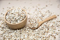 Millet is useful cereal and applied make food a variety Royalty Free Stock Photos