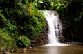 Mindo waterfall in the cloudforest near ecuador Stock Photo