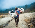 A miner carries sulpher ijen crater java indonesia from to the weigh station several kilometers away workers at make around per Royalty Free Stock Photos