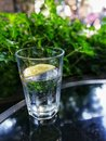 Mineral water with limes lemon Royalty Free Stock Photo