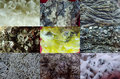 Minerals variety different in a closeup collage Royalty Free Stock Images