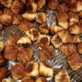 Mini croissant Royalty Free Stock Photo