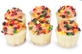 Mini cupcakes shot of several over white Royalty Free Stock Image