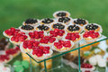 Mini fruits tarts a bunch of cupcakes sitting on glass table with green background Royalty Free Stock Photography