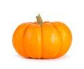 Mini Orange Pumpkin Isolated on White Royalty Free Stock Photo