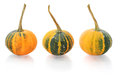 Mini pumpkins isolated on a white background with reflection Stock Photography