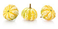 Mini pumpkins isolated on a white background with reflection Royalty Free Stock Photos