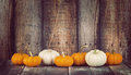 Mini pumpkins in a row on rustic background Royalty Free Stock Photo