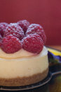 Mini raspberry cheesecake closeup of an individual red background Royalty Free Stock Photography