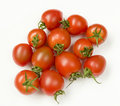 Mini tomato Stock Photography