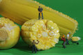 Miniature construction workers in conceptual food imagery with c corn Royalty Free Stock Photos