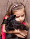 Miniature schnauzer and little girl Royalty Free Stock Image