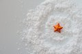 Miniature star on a white background Royalty Free Stock Image