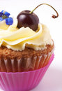 Miniature vanilla cupcake with cherry Royalty Free Stock Photography