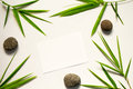Minimal flat lay with green leaf and stone. Bamboo leaf and sea pebble on white background. Royalty Free Stock Photo