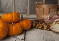 Miniture orange pumpkins several small on a rustic table with indian corn and basket Royalty Free Stock Photos