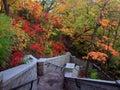 Minnehaha stairs to waterfall Стоковые Фотографии RF