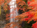 Minoh waterfall in autumn Royalty Free Stock Photography