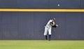 Minor league baseball trenton nj july trenton thunder center fielder mason williams prepares the ball back in from center field Royalty Free Stock Image