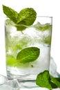 Mint ice vodka Royalty Free Stock Photo