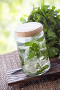 Mint Infuse Water Royalty Free Stock Photo