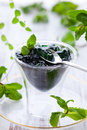 Mint jelly Royalty Free Stock Photo