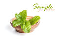 Mint leaves in wooden plate on white background Royalty Free Stock Photos
