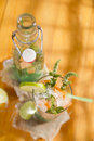 Mint and melon appetizer presentation of the aperitif made from fruit Royalty Free Stock Images