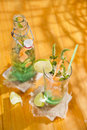 Mint and melon appetizer presentation of the aperitif made from fruit Stock Images