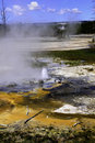 Minute Geyser, Yellowstone National Park Stock Image