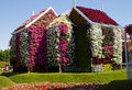 Miracle garden dubai in uae Royalty Free Stock Photography